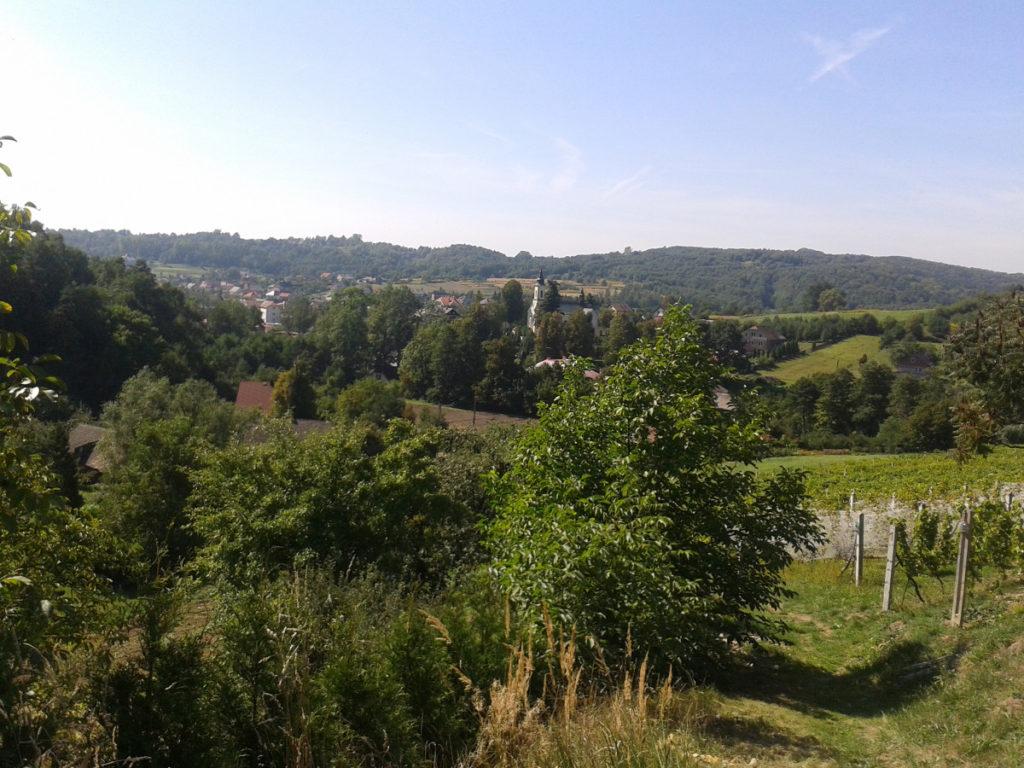 Widok ze wzgórza Brandyska