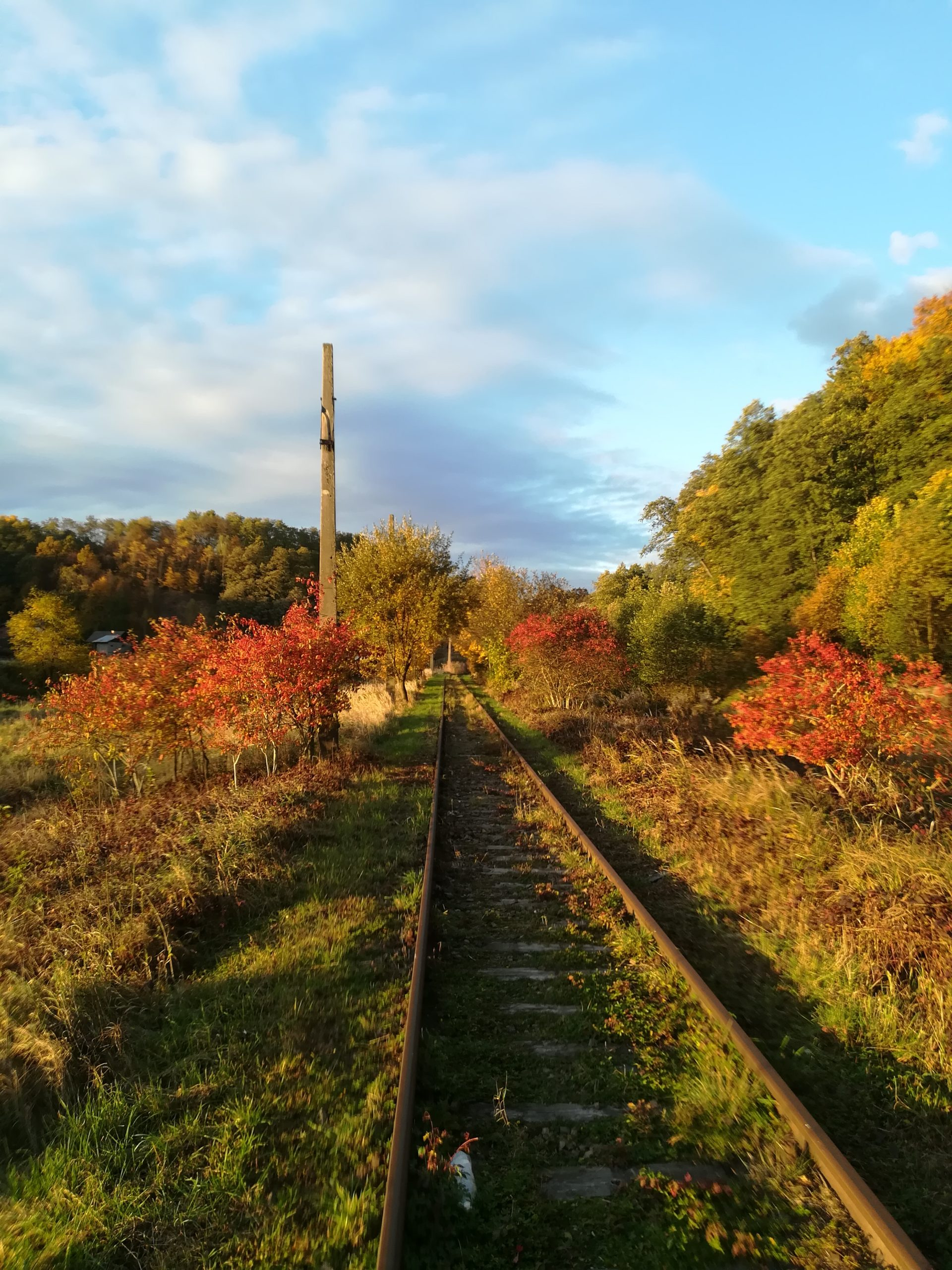 Piękna polska złota jesień